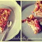 tarte-crumble-rhubarbe-framboise2